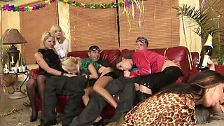 drunk hotties end up having an orgy with big cocks