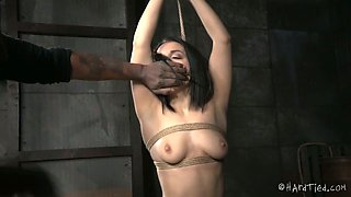 Beautiful brunette babe is suspended and punished by BBC