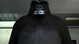 Mysterious sexy thief wild cat vs gorilla man