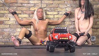 Toy Car - Holly - Queensnake.com - Queensect.com