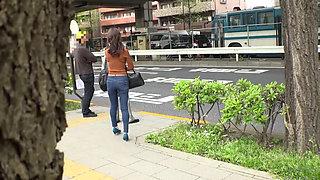 Japanese Public Bus Molester Fuck