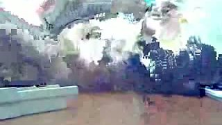 Spy cam video of my boss fucking our big ass Desi secretary